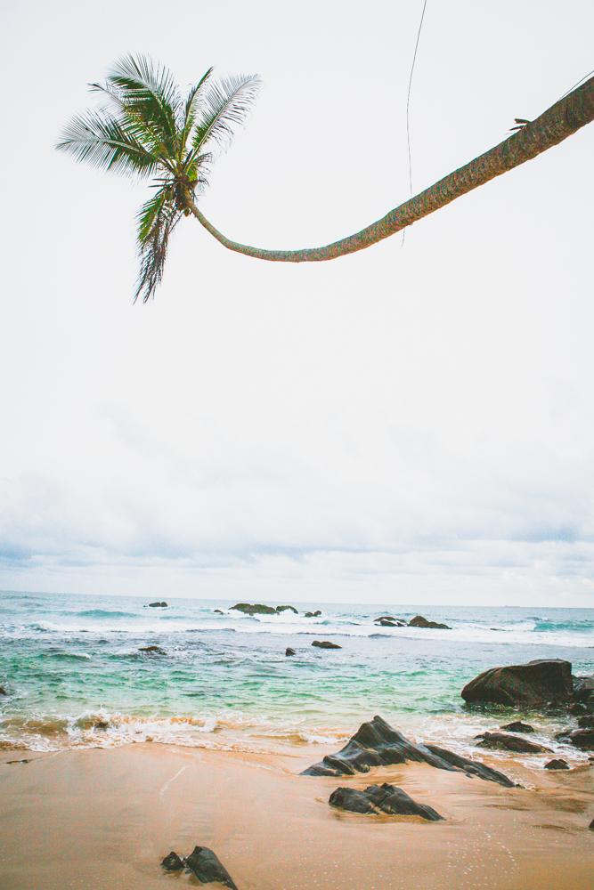 SriLanka-IMG_0298.jpg