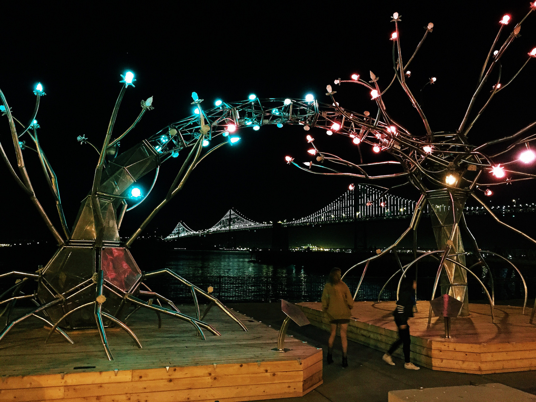 Burningman SF.jpg