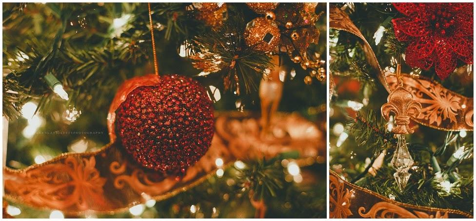 2014-12-30_0072.jpg