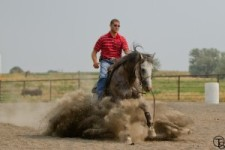 Cal Middleton horse and rider training