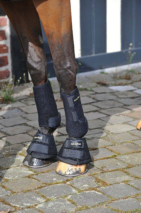 Does your horse have navicular or soft tissue damage in their hoof?