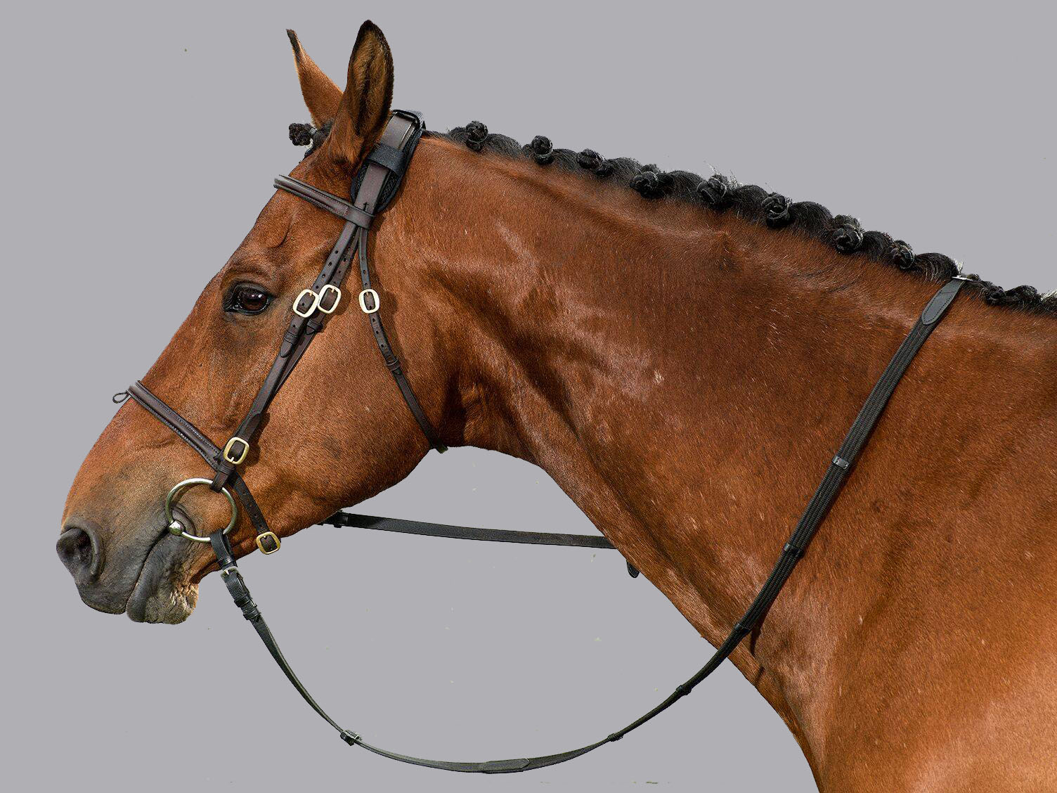 Does your horse carry tension in their Poll?