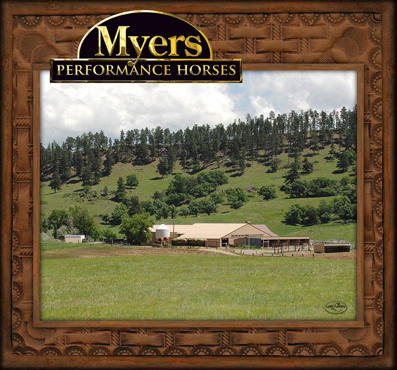 Myers Performance Horses