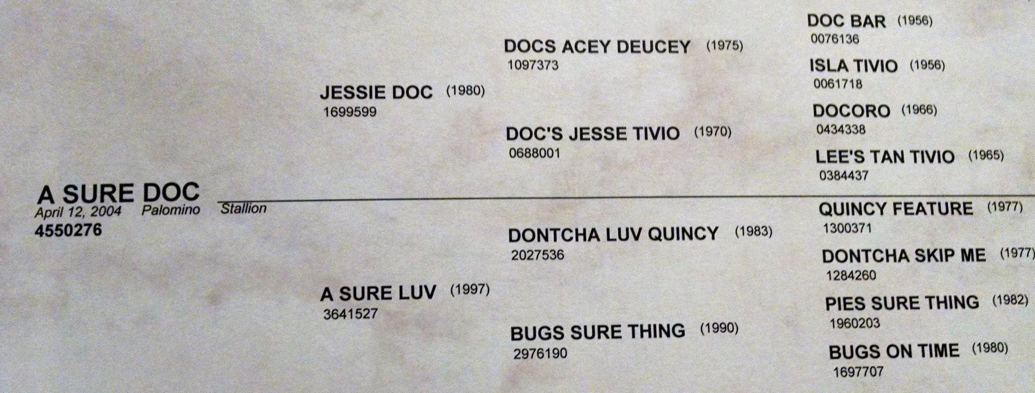 sure doc pedigree.jpg