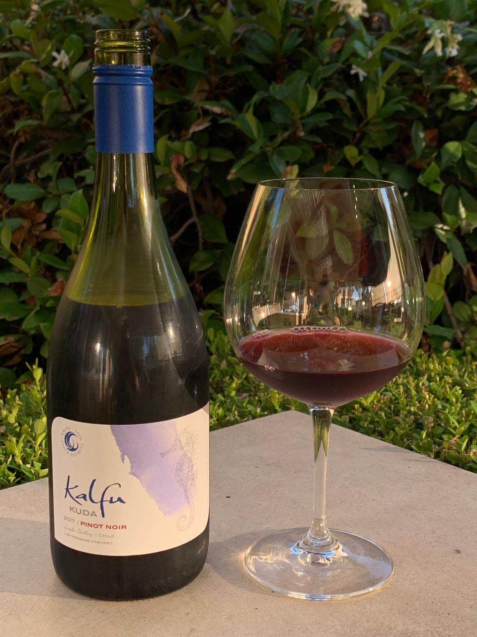 Kalfu Pinot Noir.jpg