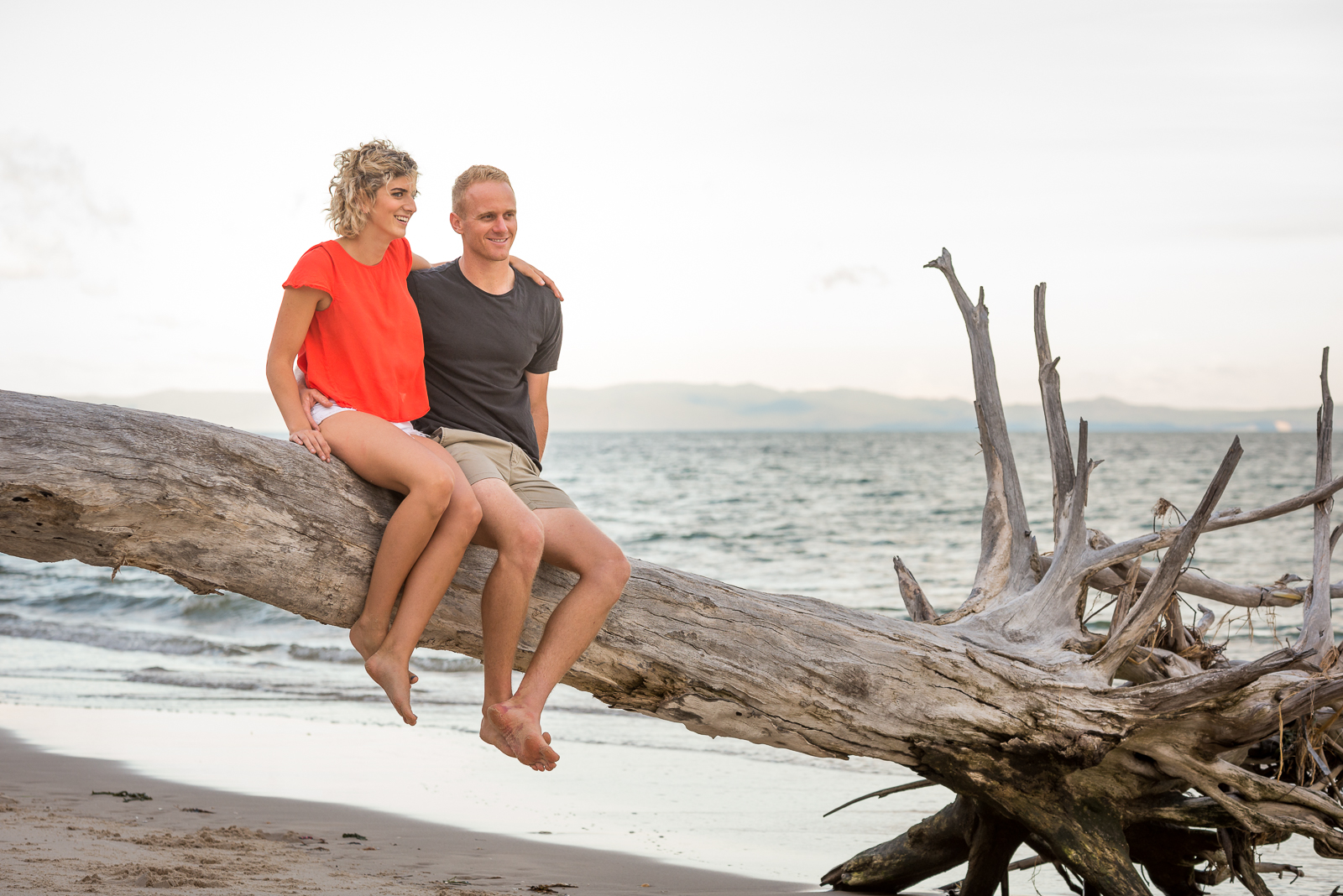 Couple sitting on driftwood tree during beach engagement photo shoot