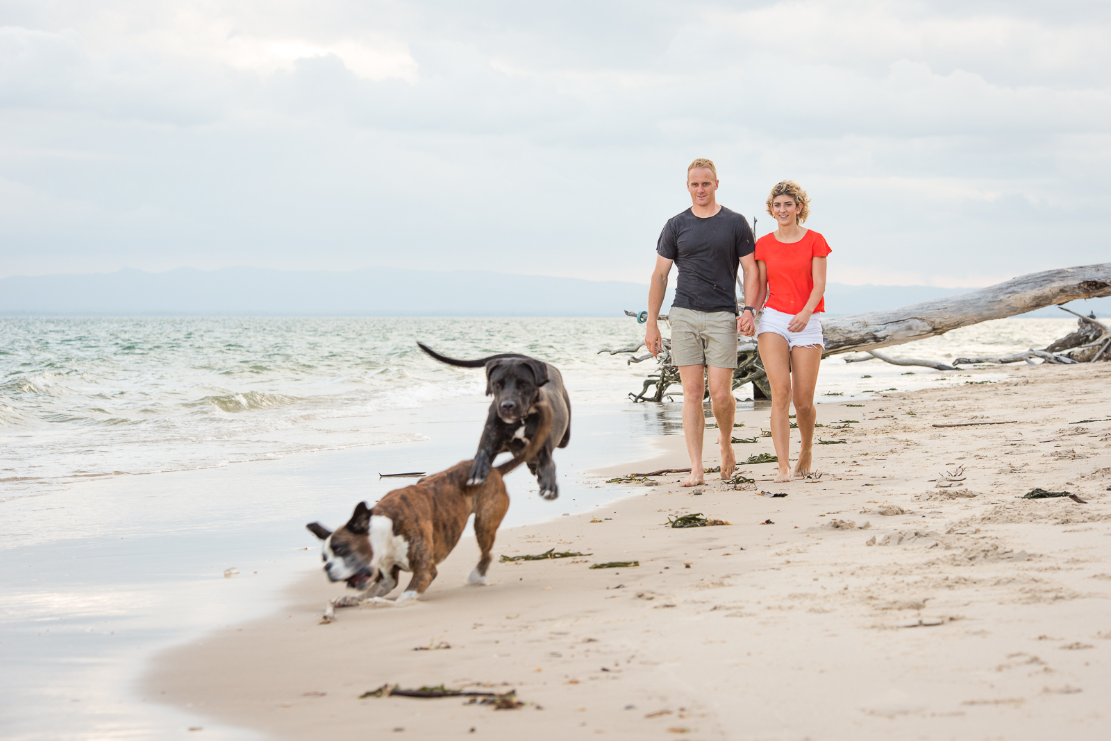 Young couple and their dogs walking down beach, engagement portraits