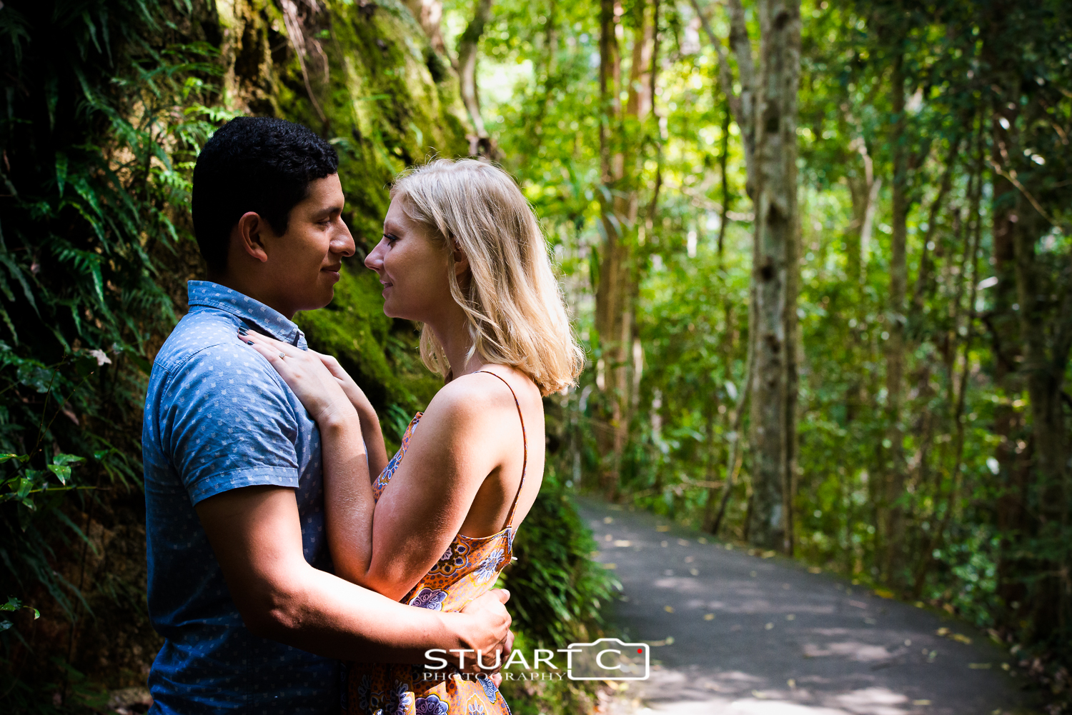 Engaged Couple embracing on rainforest walkway at Kondalilla Falls Sunshine Coast Hinterland