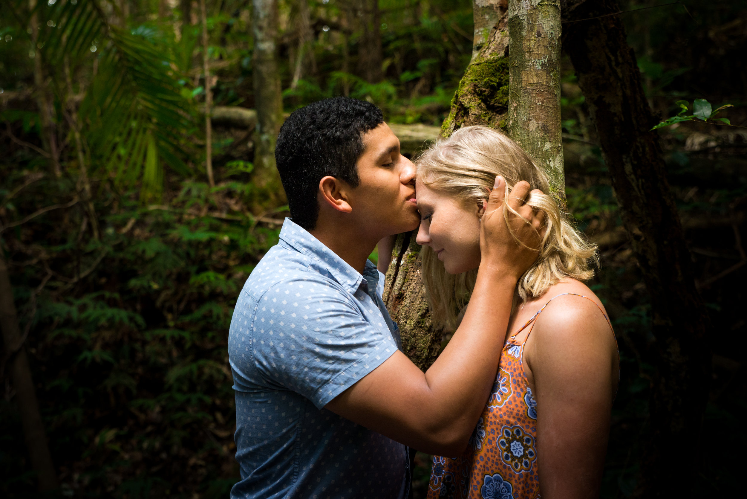 engaged couple kissing forehead in rainforest at Kondalilla Falls Sunshine Coast Hinterland