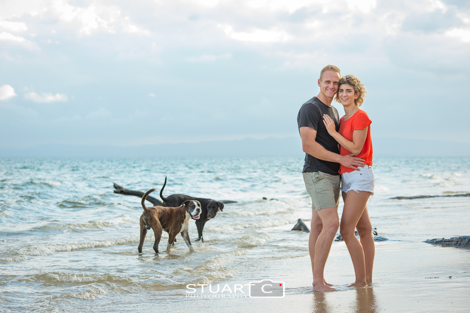 engaged couple with dogs on red beach bribie island