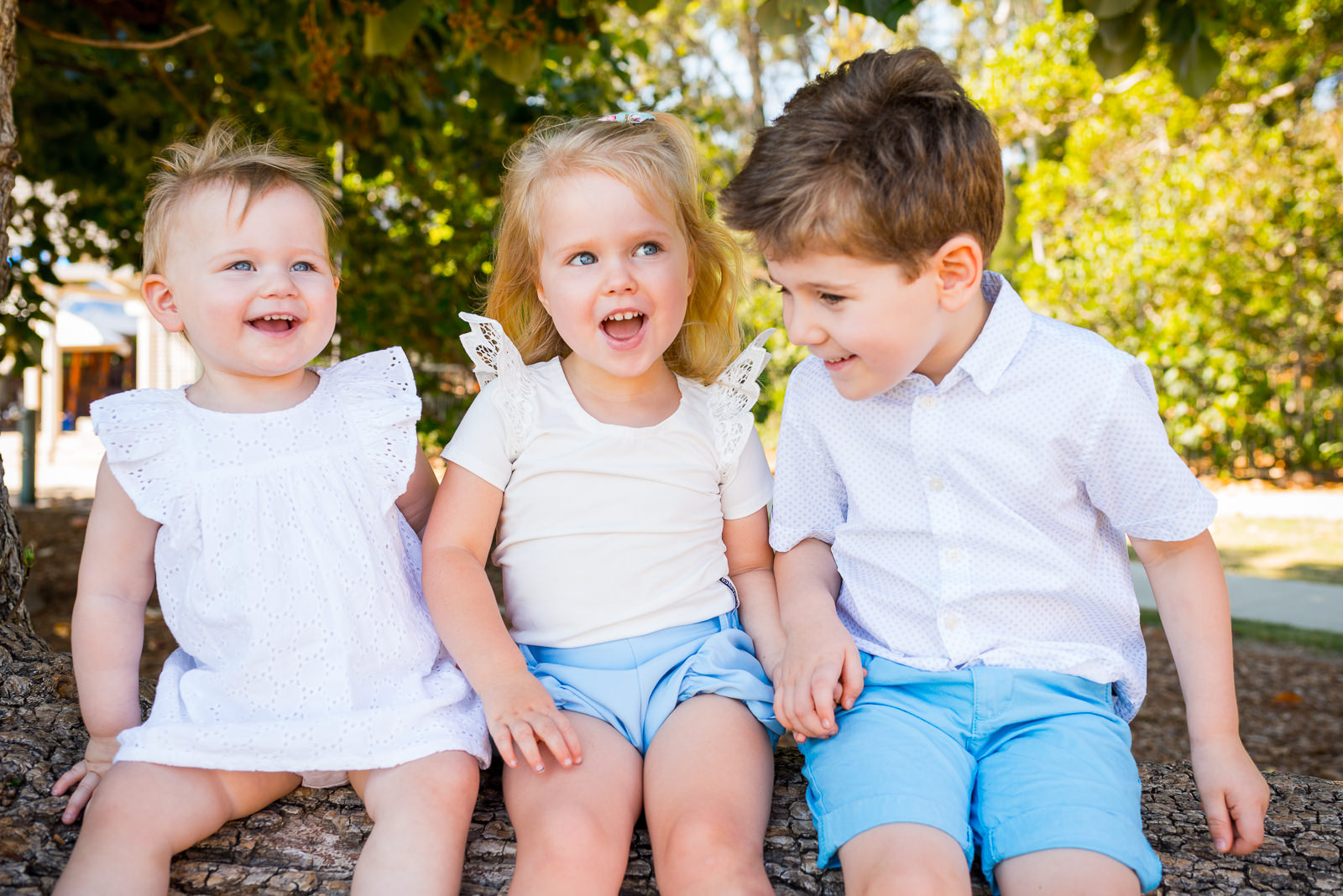 portrait of three young children sitting on a log near shorncliffe pier