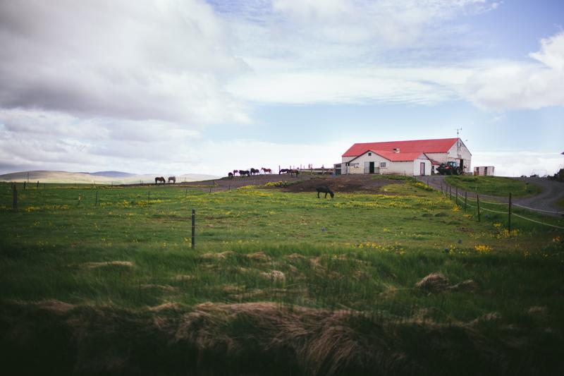 Iceland by Eva Kosmas Flores-67.jpg