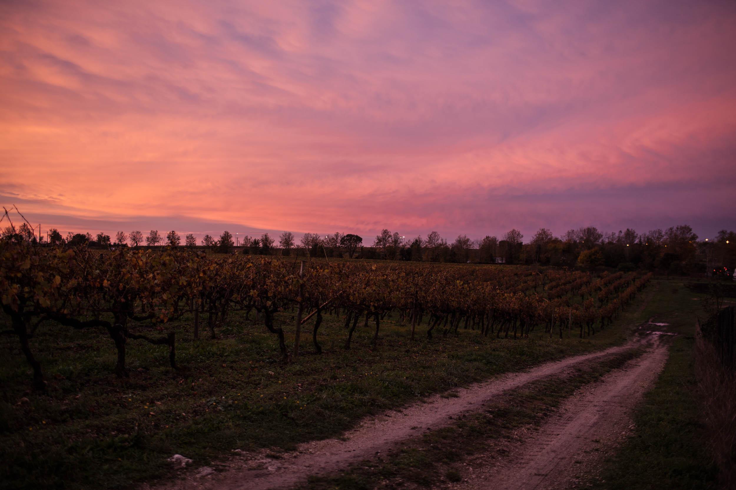 Bordeaux Workshop-5.jpg