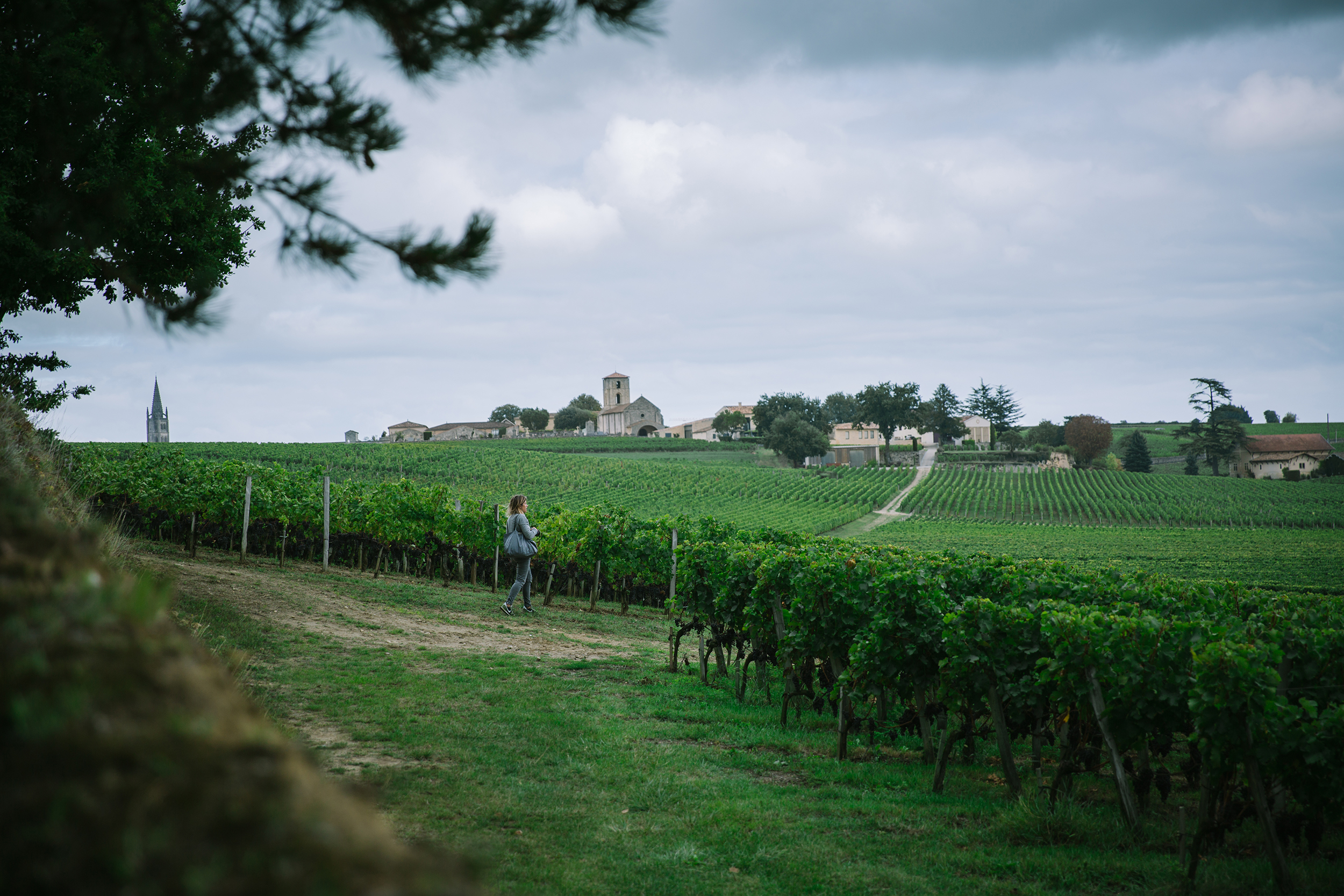Bordeaux Winery by Eva Kosmas Flores-.jpg