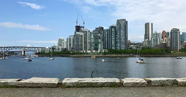 Lunchtime at the seawall. 'Cause I can. #walkies #seawall #ilovevancouver