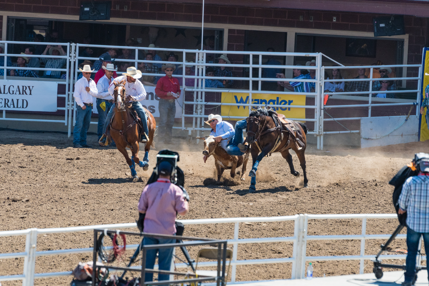 The idea was the pull along side the bull,jump off and absolutely flatten the poor bastard.