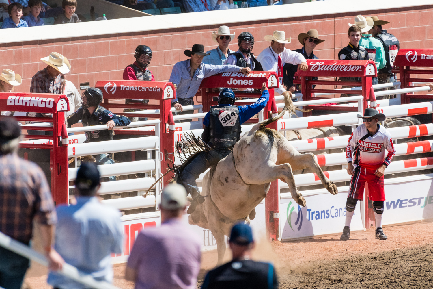 If you found riding a angry horse was simply too easy, then riding a massive angry bull was your thing.