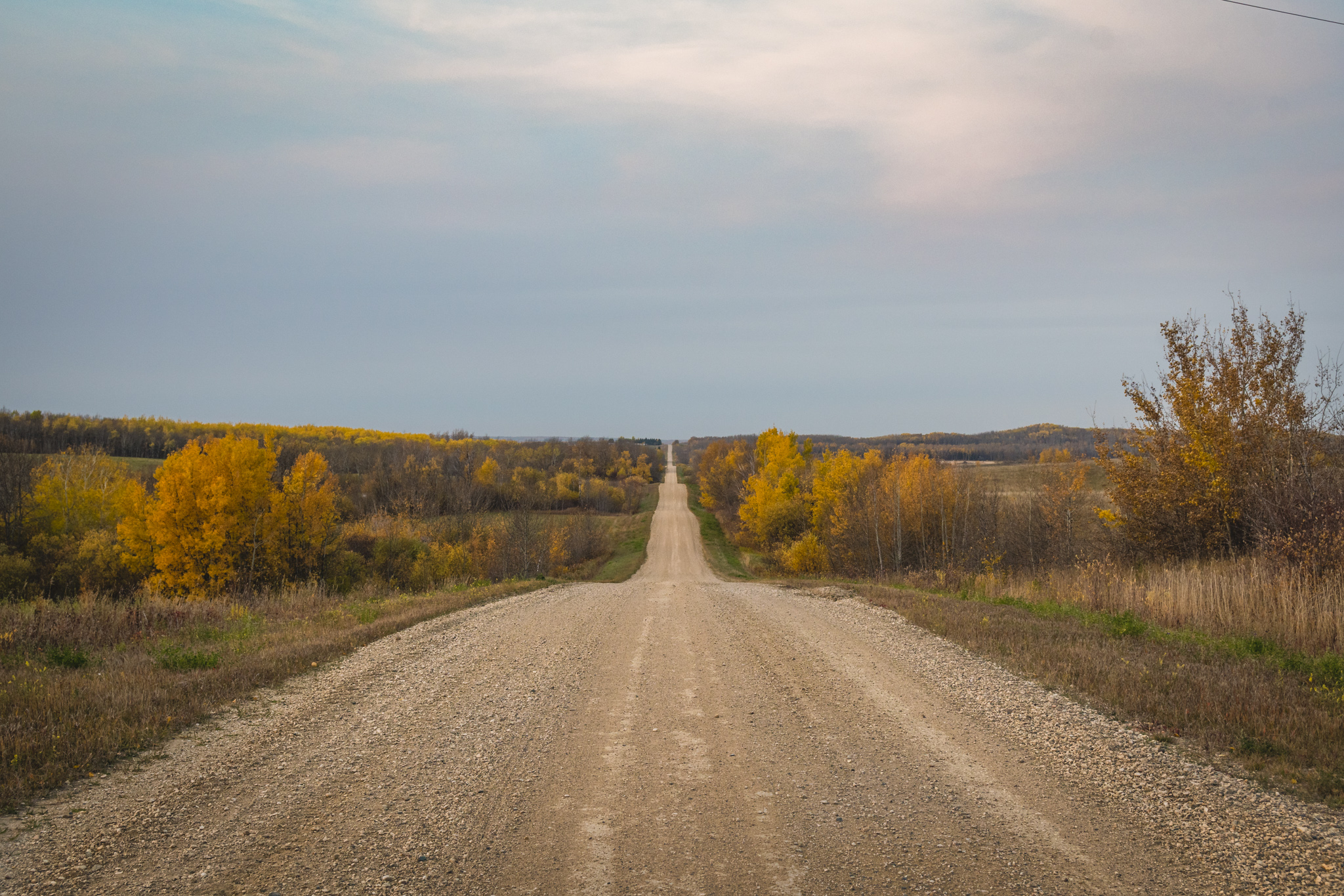 The long road to town.