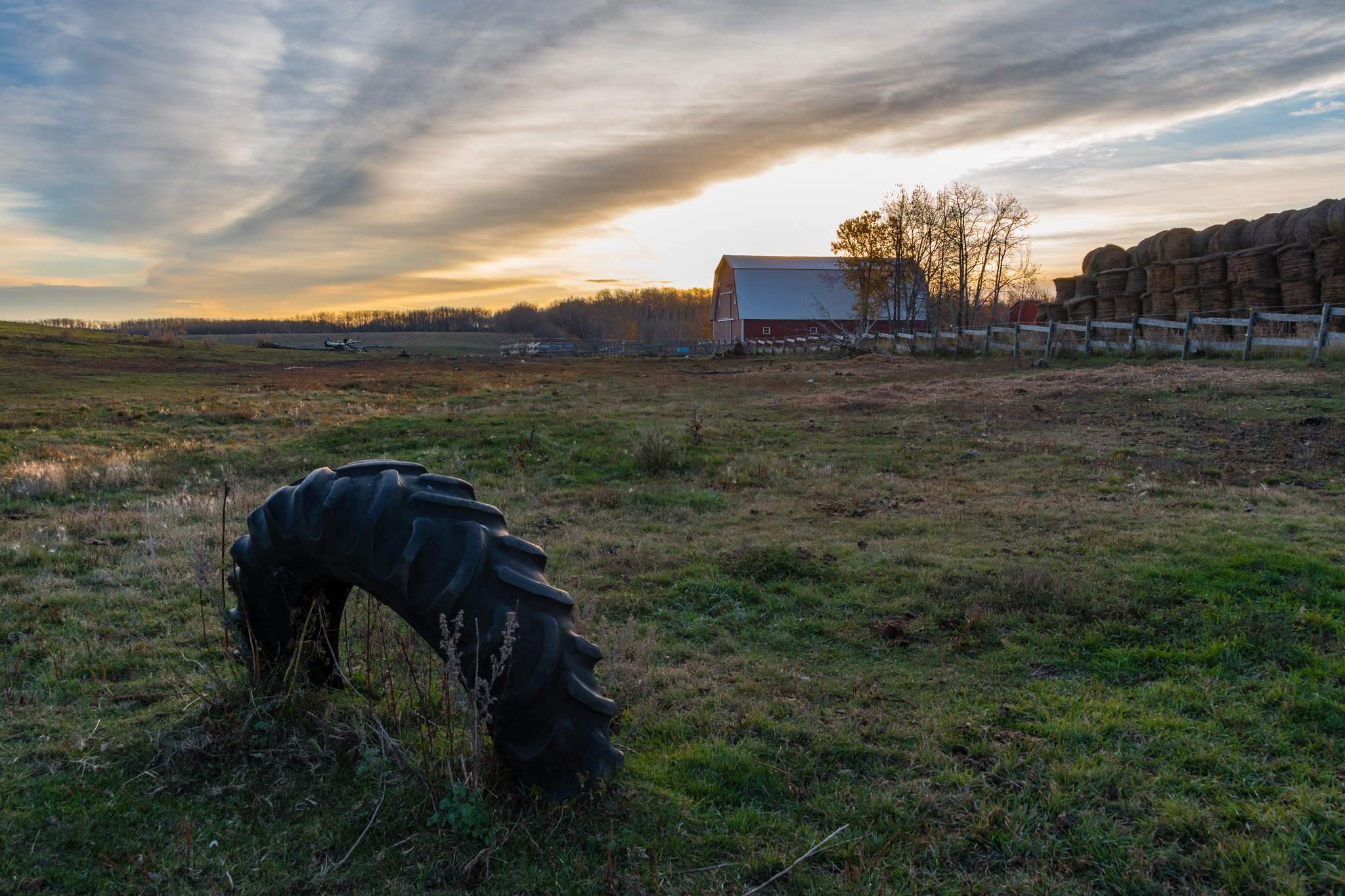I have always been a city person, but I can appricate the farm life.