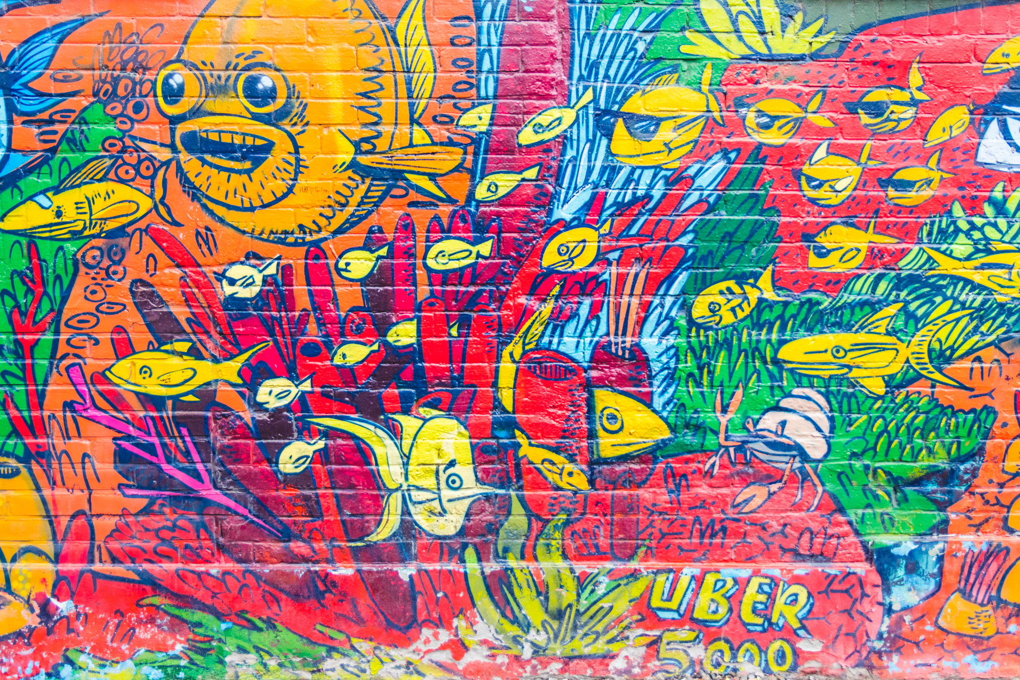 Most of the larger murals were done by an artist known as Uber 5000. You can usually see his name writer somewhere within his work.