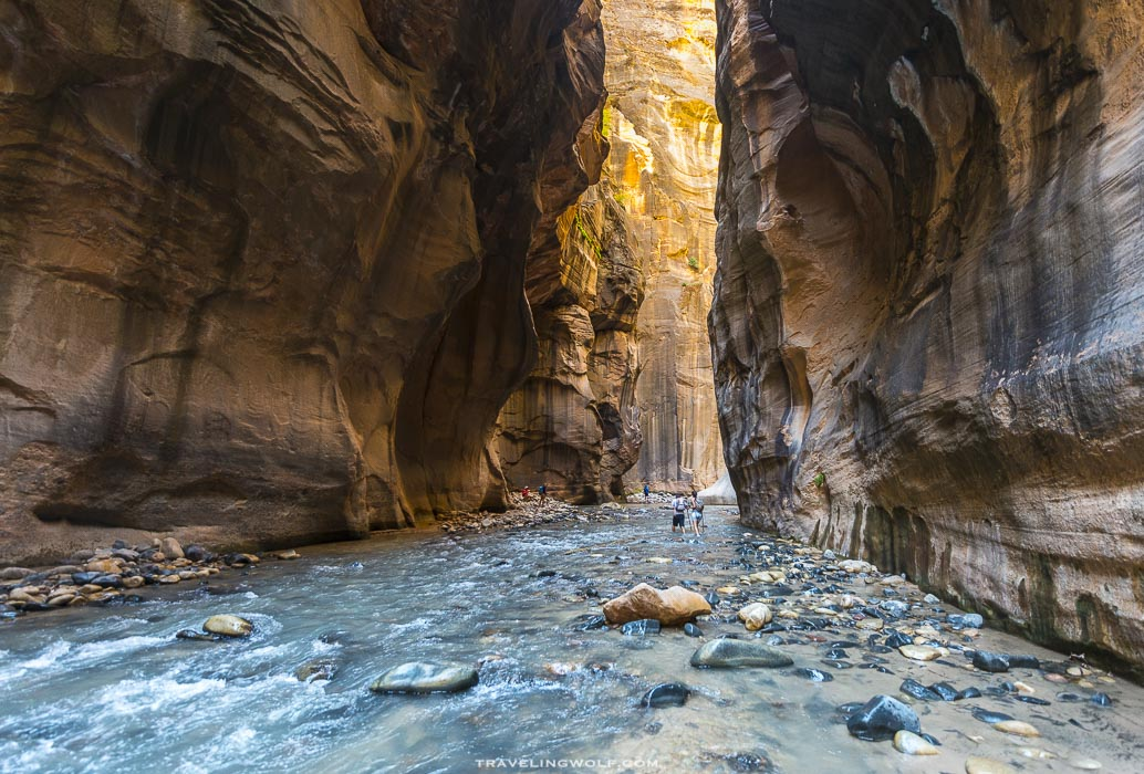 the-narrows-zion-np