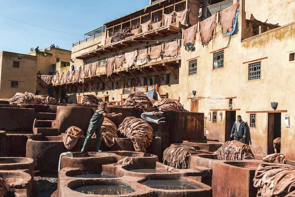 Workers in the tanneries