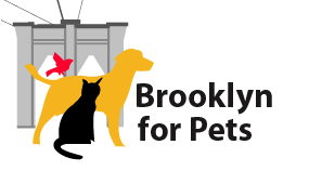 brooklyn_for_pets.png