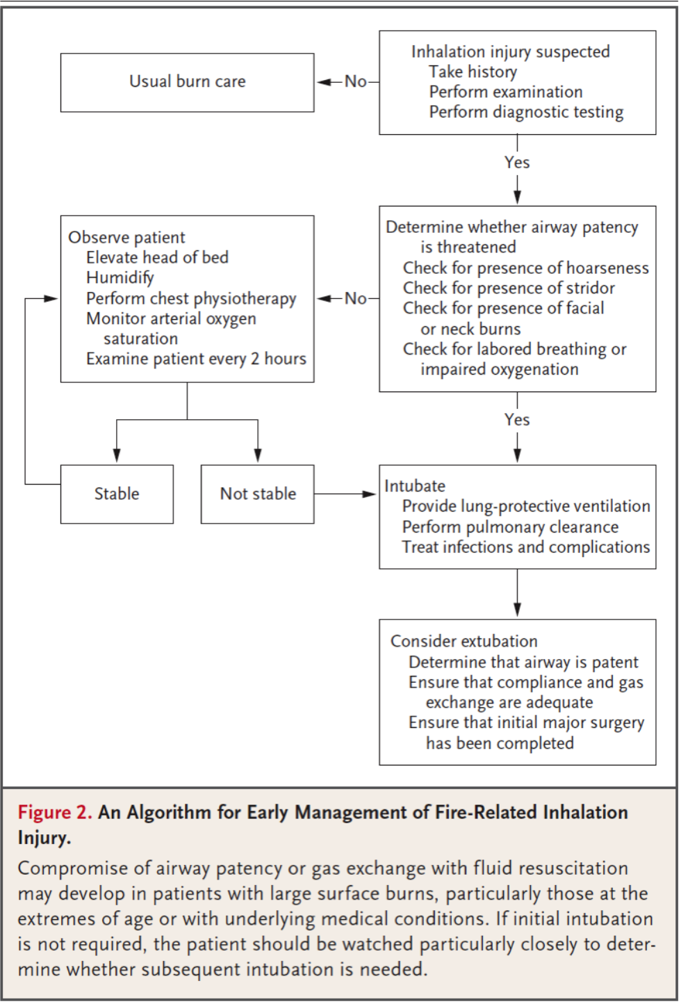 "From ""Fire-Related inhalation Injury [9]"""