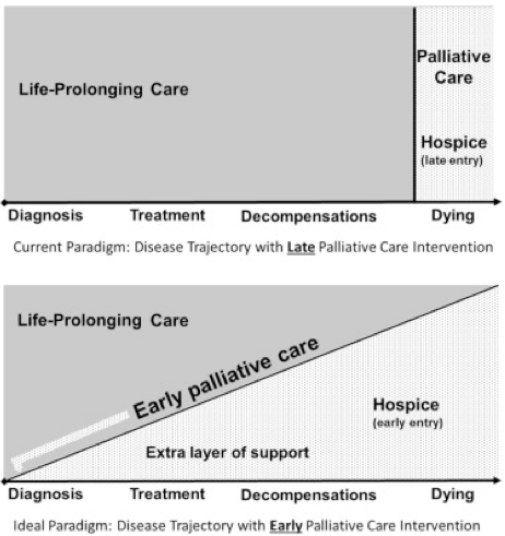 "Image Credit: ""Reconceptualizing palliative care as a continuum of support""Wang, David H., MD. Published March 31, 2017. Volume 69, Issue 4. Pages 437-443."
