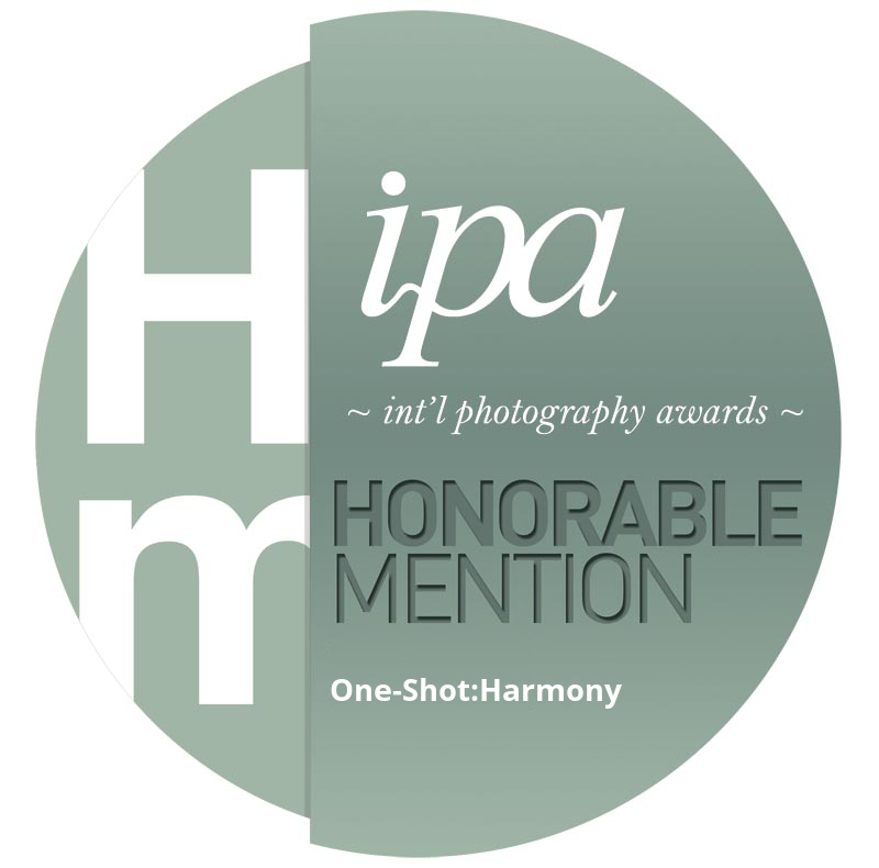 IPA_2017_One-Shot_honerable-mention.png