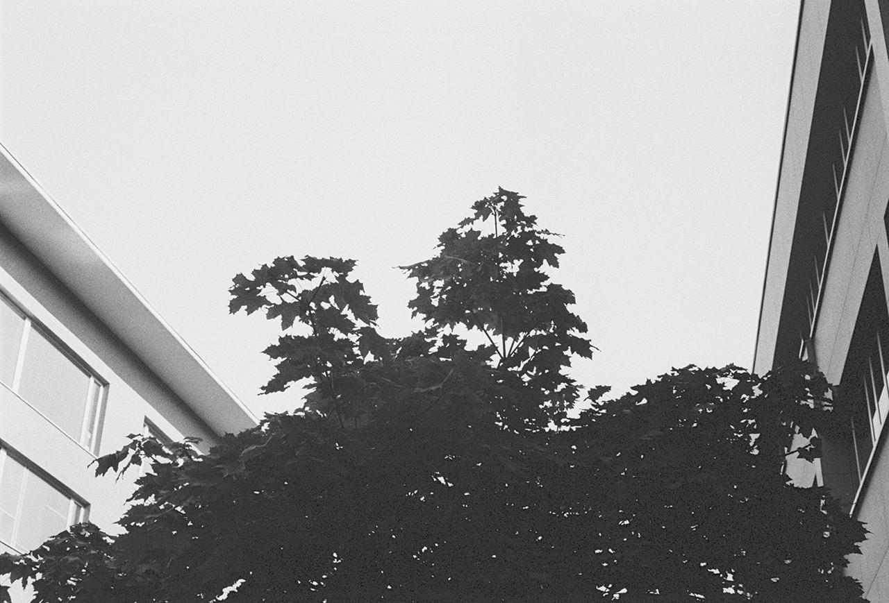 Untitled (14).jpg