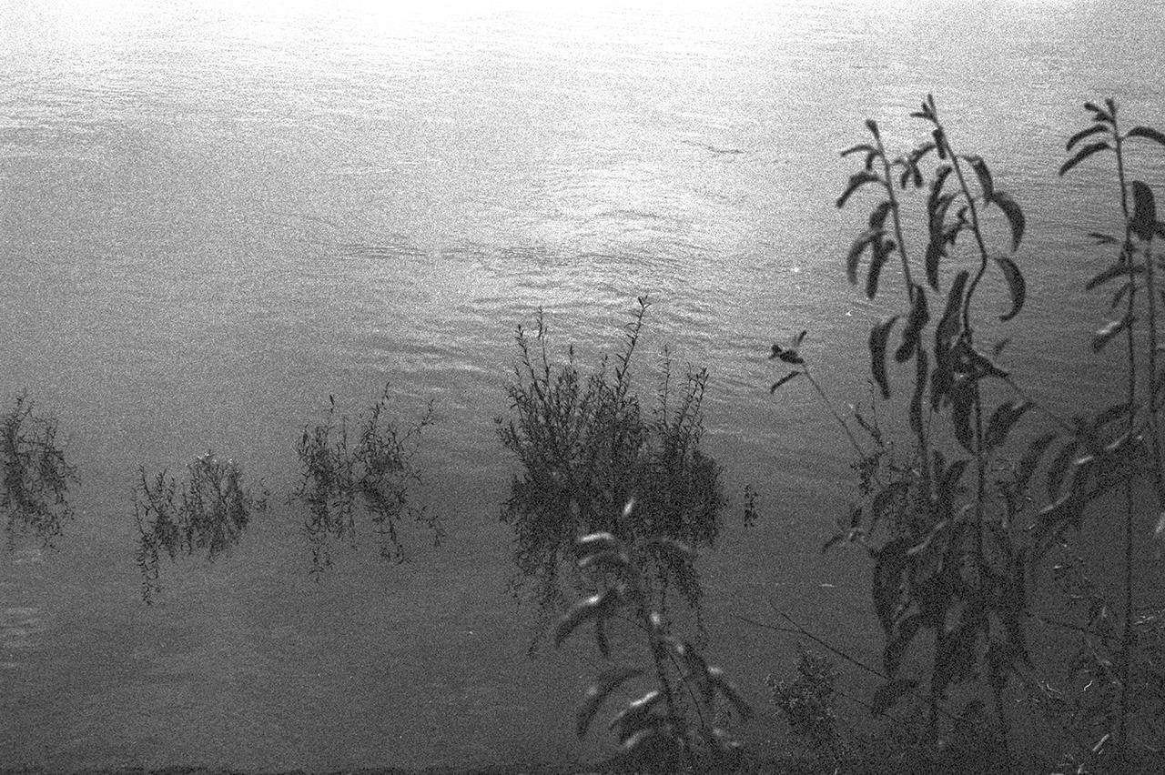 Untitled (25).jpg
