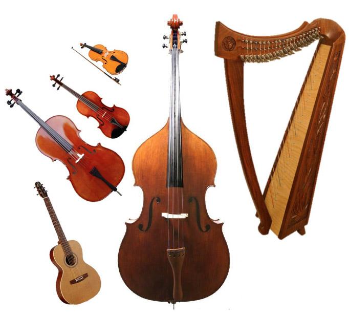 instruments-strings.jpg
