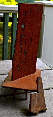 """To my surprise, it was a piece of old growth English White Oak which, I read, is called brown oak after a fungus attacks the tree, turns the wood brown, and eventually kills the tree. It is a very hard wood, and apparently very resistant to anything that chews on wood. The piece above is about 3/16"""" thick and marine borers have only had very limited success in getting that deep into the piece, even in the end grain. A most remarkable wood."""
