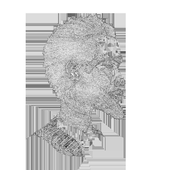 Illustrationer-27.png