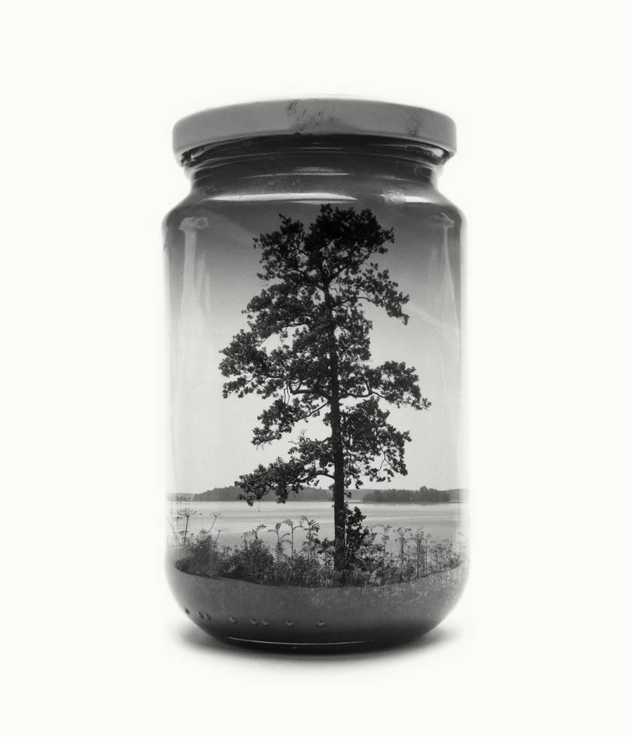 bwglasspictures8-900x1050.jpg
