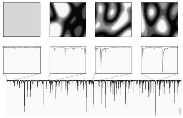 Spatiotemporal specificity of neuronal activity directs the modification of receptive fields in the developing retinotectal system