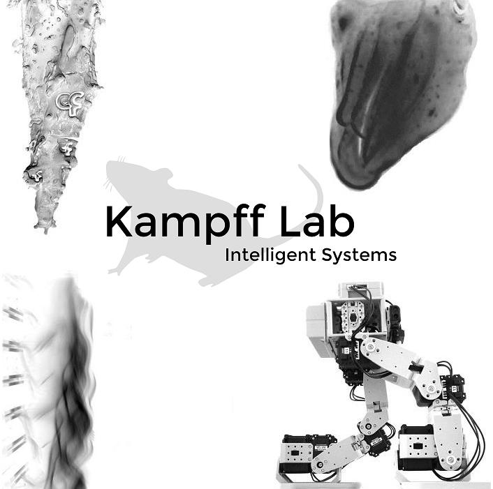 kampff-lab-overview-logo