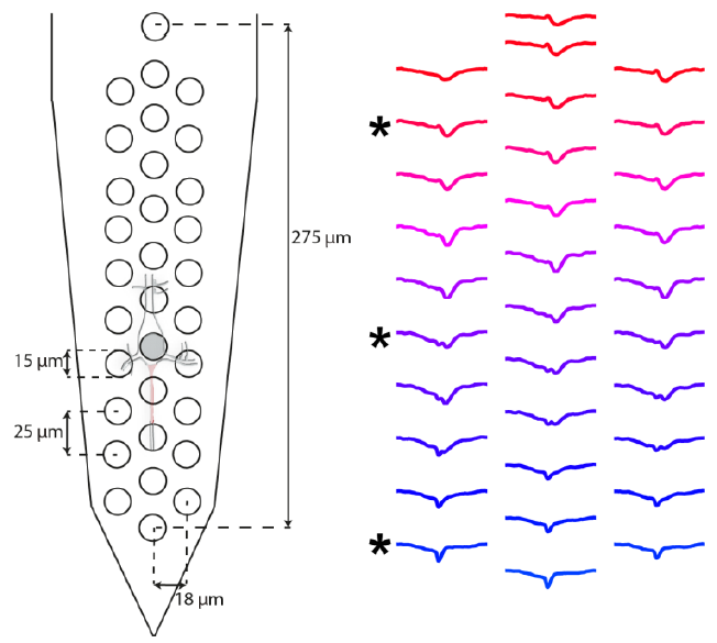 Validating silicon polytrodes with paired juxtacellular recordings: method and dataset