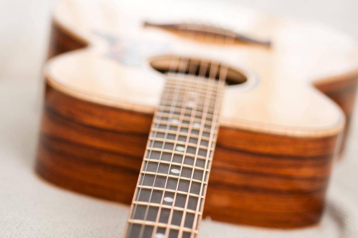 Hawkins Orchestra Model Fretboard