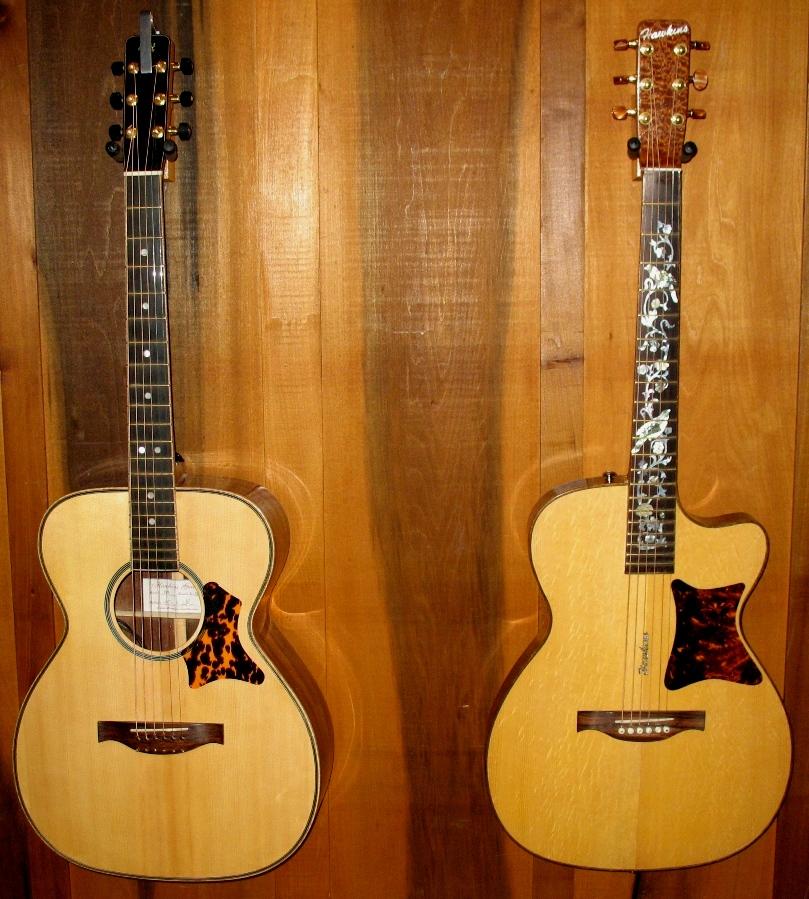 Hawkins Thin Body Guitar Shape