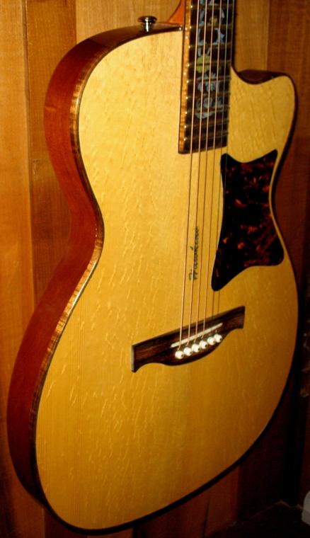 Hawkins Thin Body Guitar Pick Guard