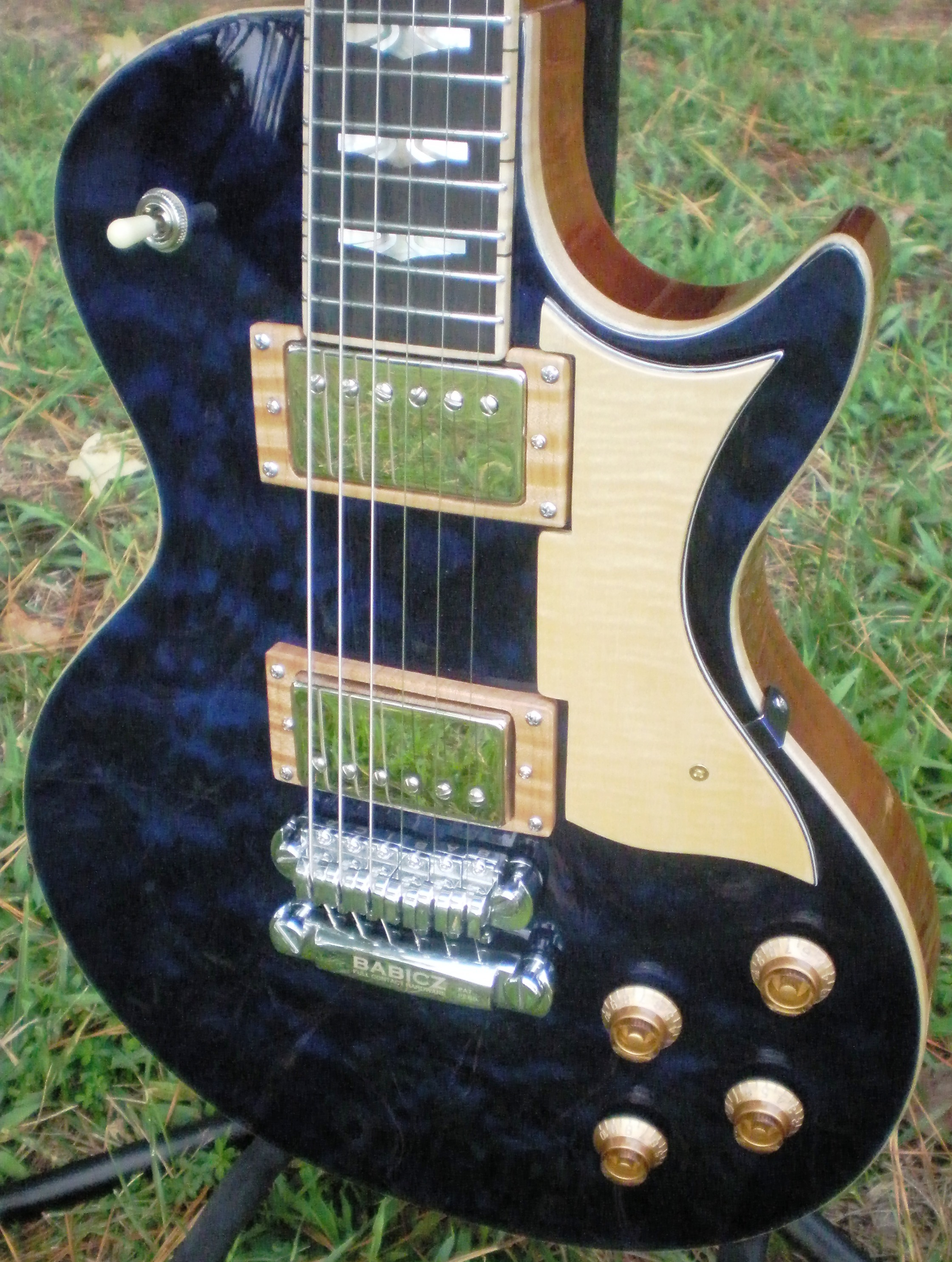 Hawkins Electric Guitar Pick Up Rings