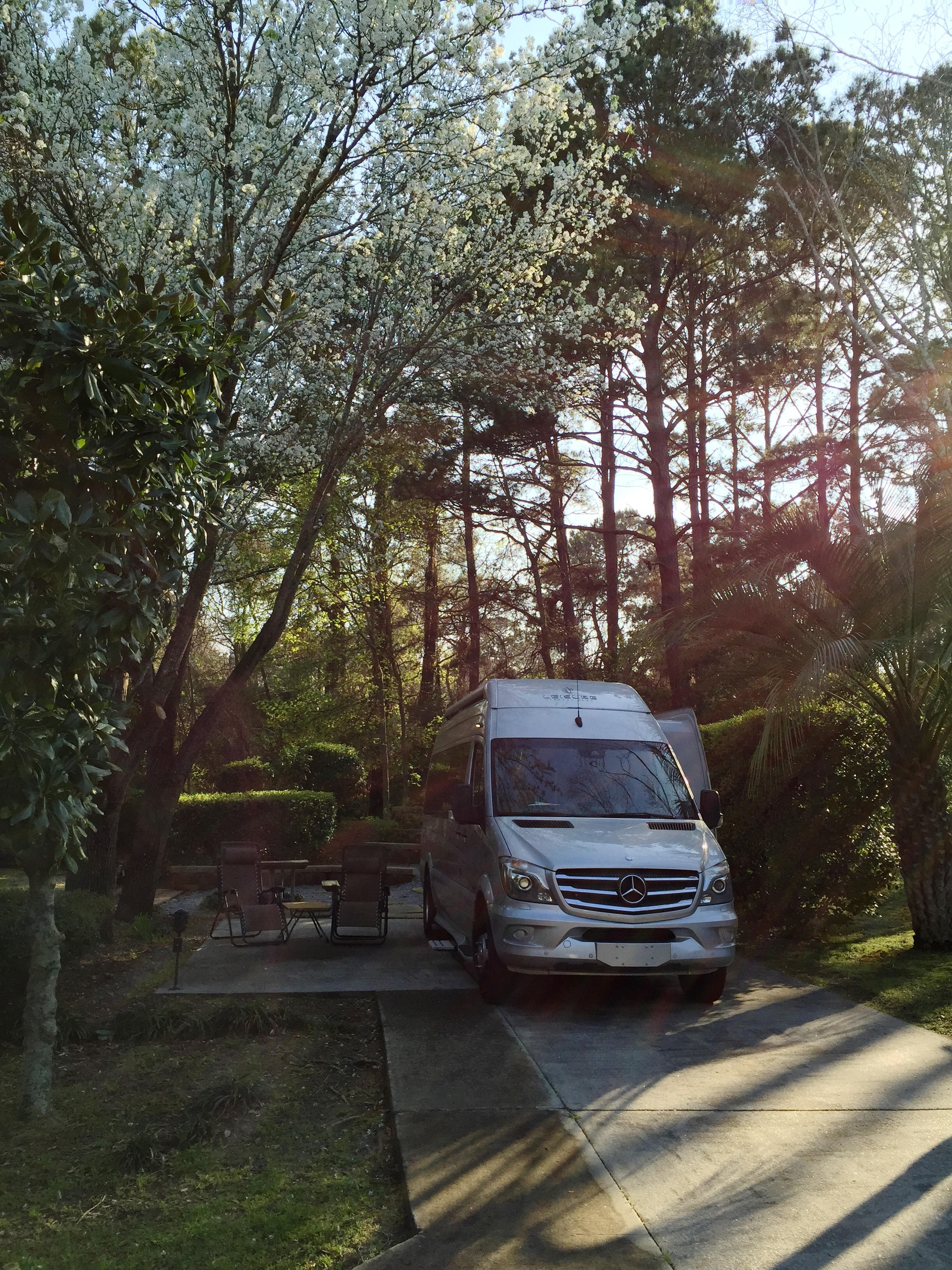 Our campsite on the north side of Hilton Head Island