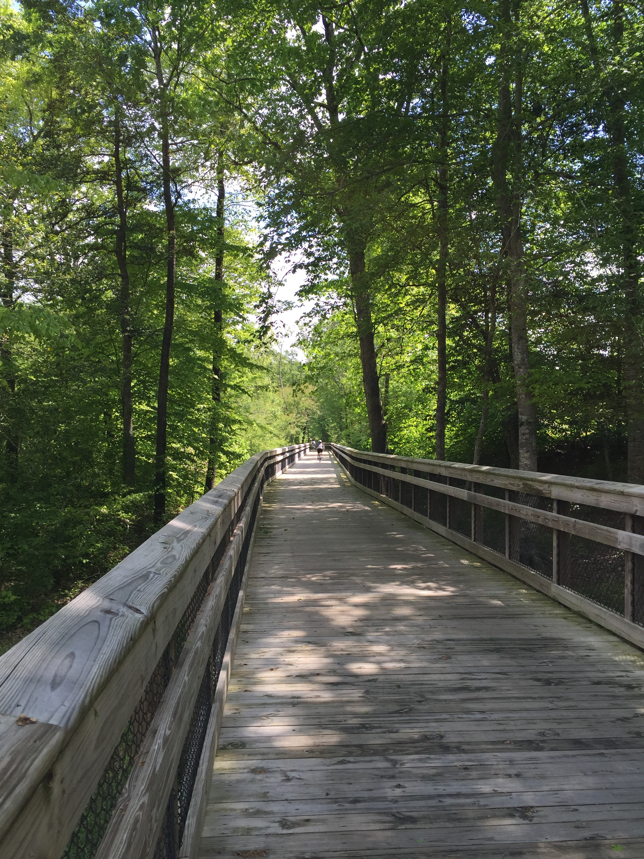 One of the boardwalks on the trail