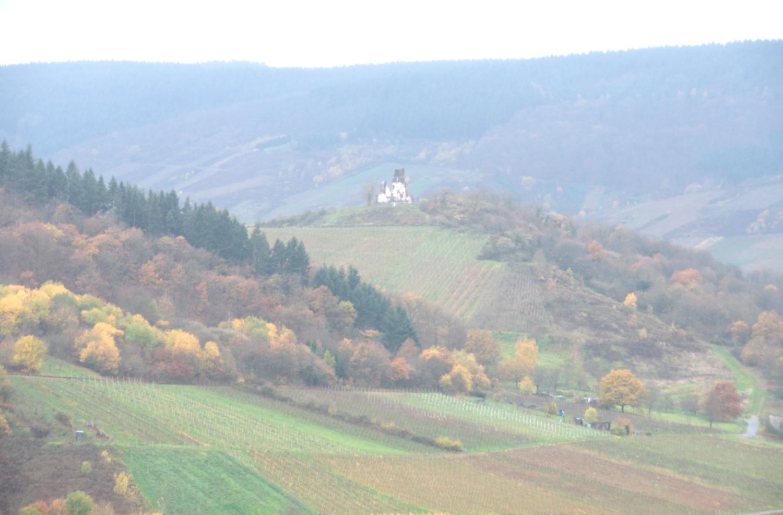 nature-hiking-traben-trarbach.png