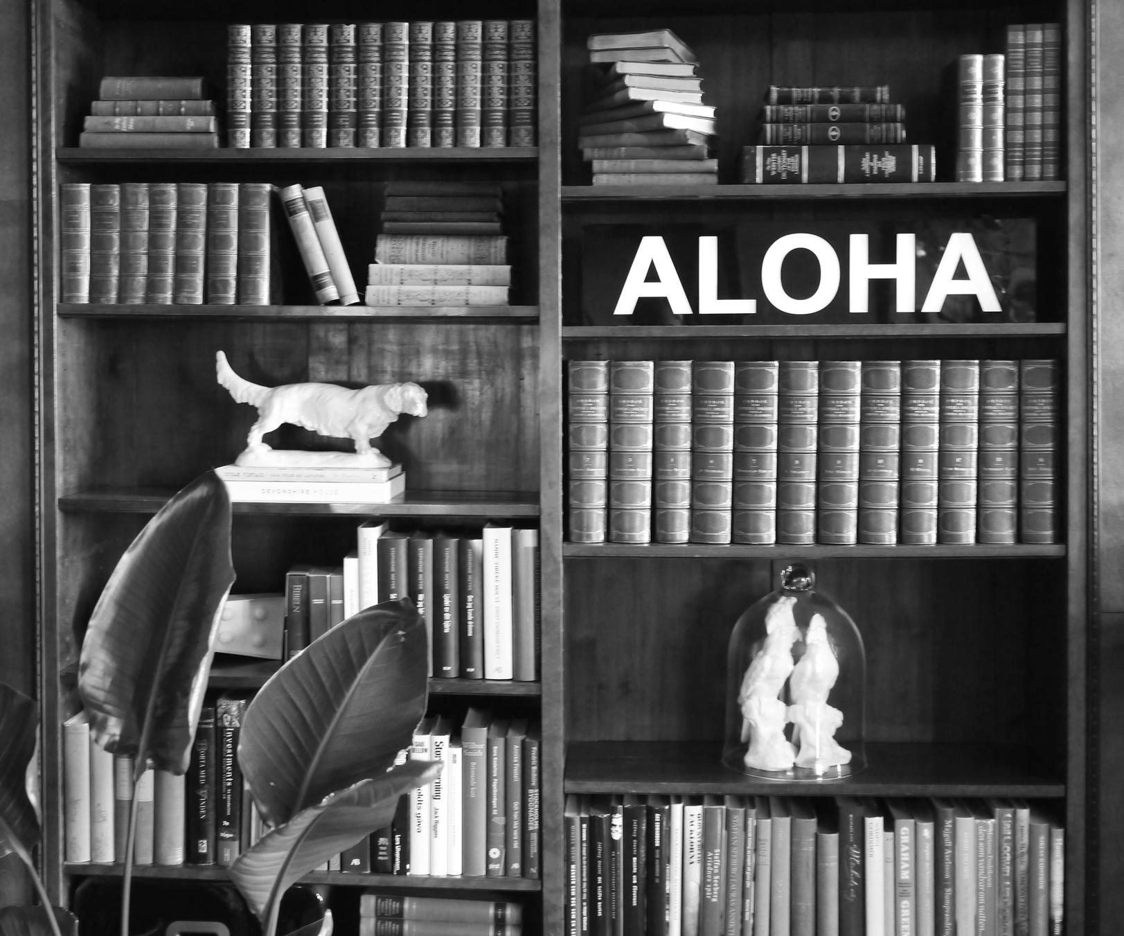 En nykomling i bokhyllan, ljusbox från BXXLGHT