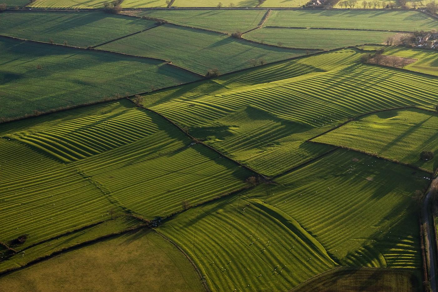Medieval Strip Farming