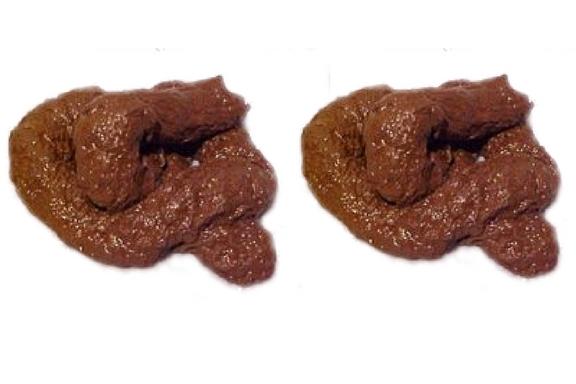 Piles of Poop - 2.jpg