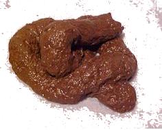 Poop - clean.png